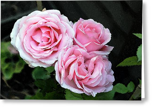 Greeting Card featuring the photograph Rose 3 by Helene U Taylor
