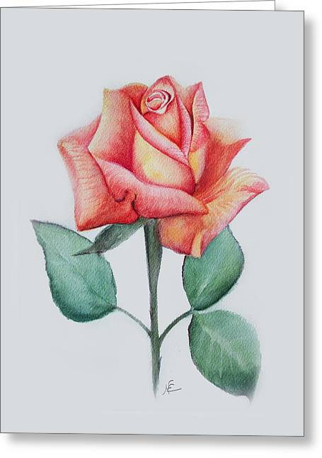 Rose 4 Greeting Card by Nancy Edwards
