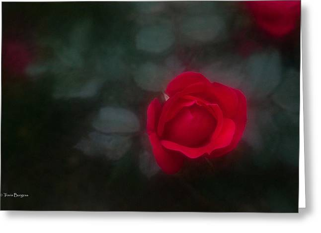 Greeting Card featuring the photograph Rose 4 by Travis Burgess
