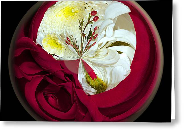 Rose And Mum Globe Greeting Card