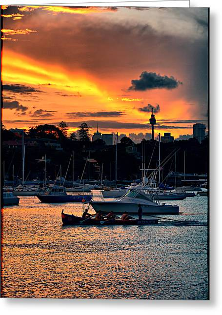 Rose Bay Marina Greeting Card by Andrei SKY