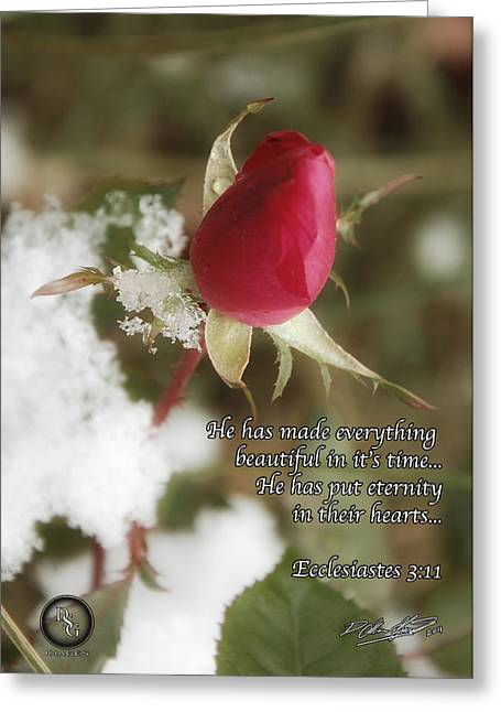 Rose Bud In Snow Greeting Card