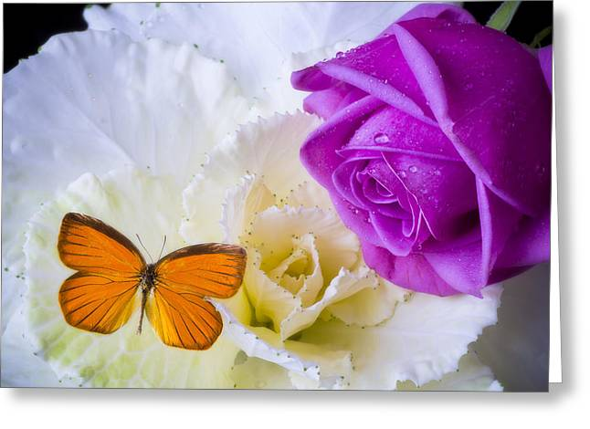 Rose Butterfly With Kale Greeting Card by Garry Gay