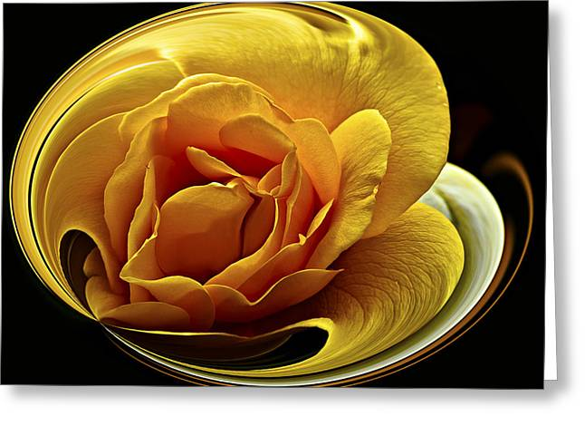 Rose Cup Greeting Card by Gary Neiss