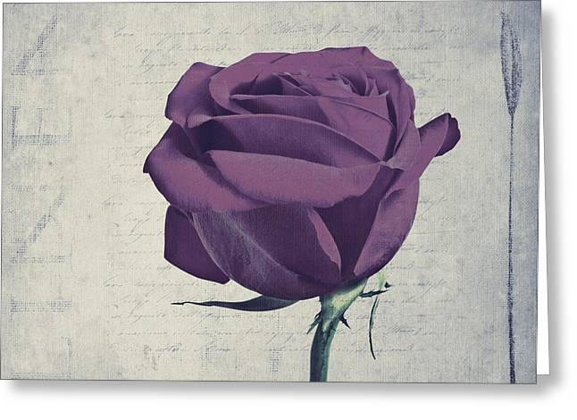 Rose En Variation -s09t09 Greeting Card by Variance Collections