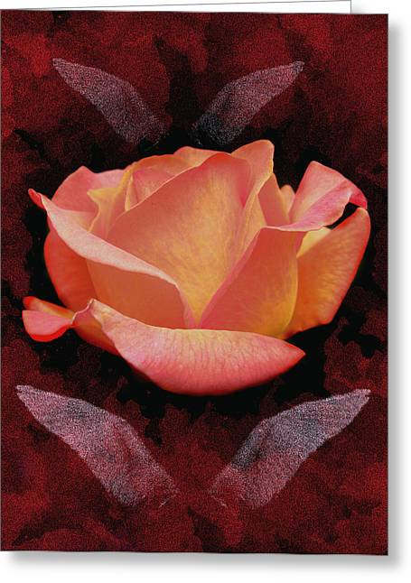 Rose From Angels Digital Art Greeting Card by Costinel Floricel