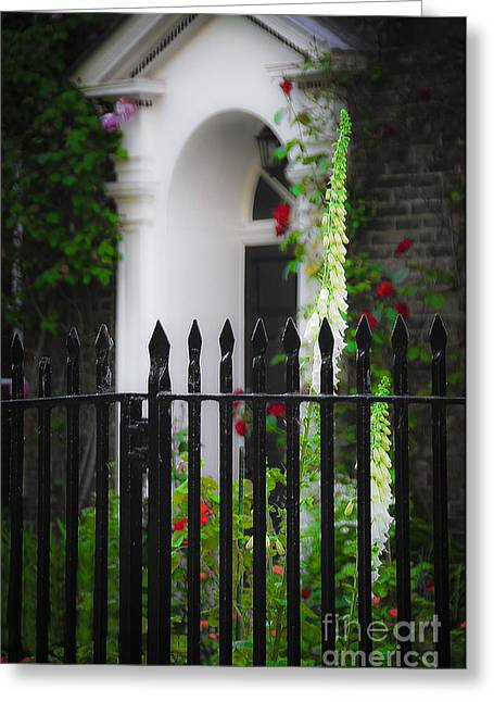 Greeting Card featuring the photograph Rose Garden by Ken Johnson