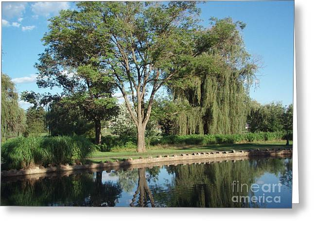 Greeting Card featuring the photograph Rose Garden  by Jeannie Rhode