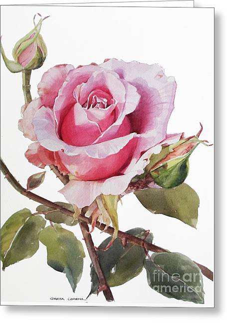 Pink Rose Grace Greeting Card