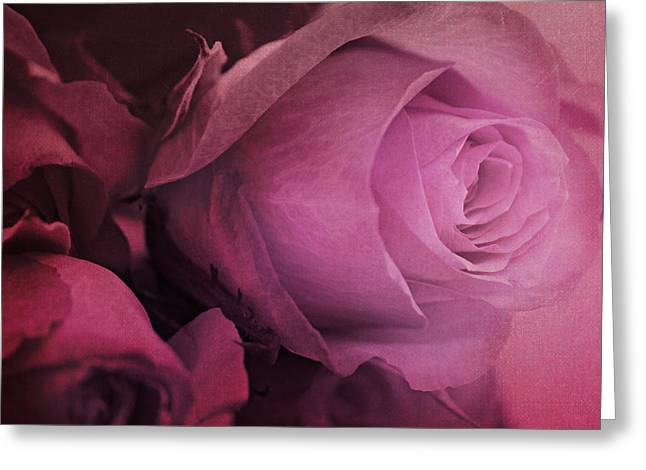 Rose Greeting Card by Heike Hultsch