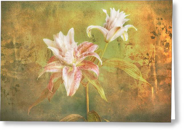 Greeting Card featuring the photograph Rose Lily Silk by Bob Coates