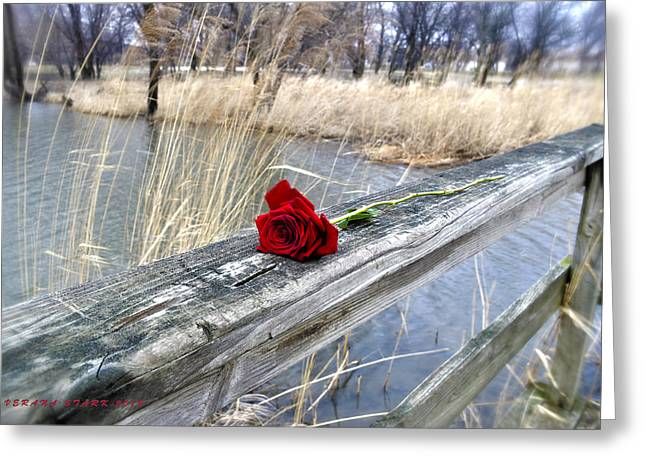 Greeting Card featuring the photograph Rose On A Bridge by Verana Stark