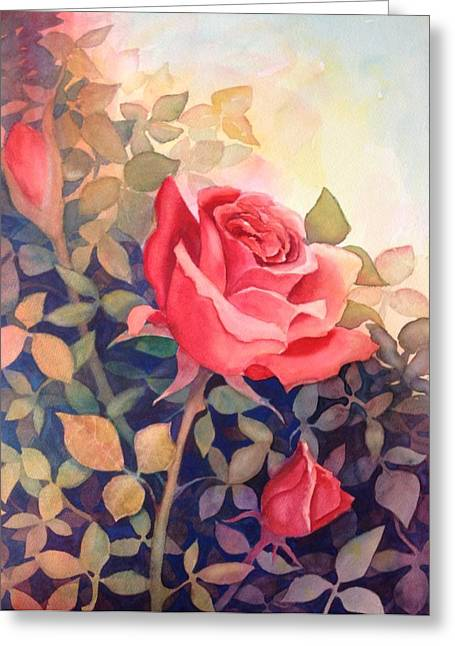 Rose On A Warm Day Greeting Card by Marilyn Jacobson