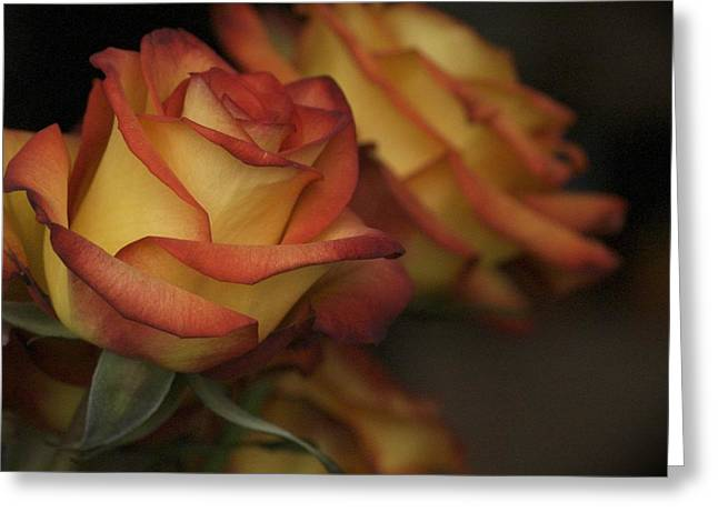 Rose Parade Greeting Card