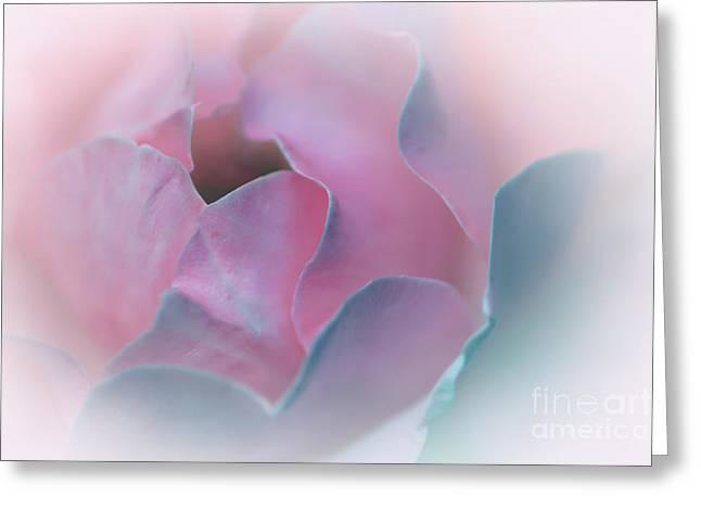 Rose Petal Pastel By Kaye Menner Greeting Card