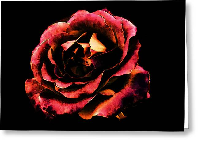 Rose Red Greeting Card by Persephone Artworks