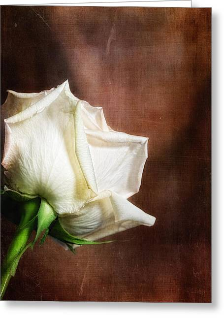 Rose - See Things Differently Greeting Card by Tom Mc Nemar