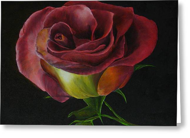 Rose Greeting Card by Sherry Robinson