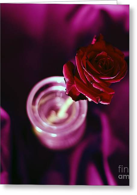 Rose Greeting Card by Stelios Kleanthous