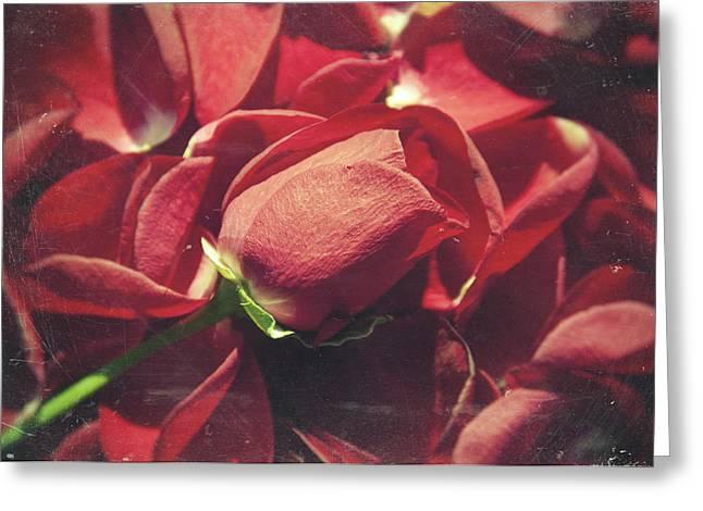 Rose Greeting Card by Taylan Apukovska