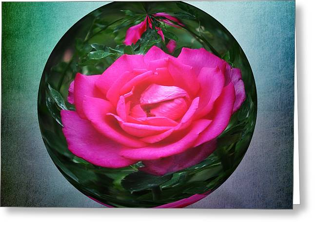 Rose Through The Glass Greeting Card by Mary Machare