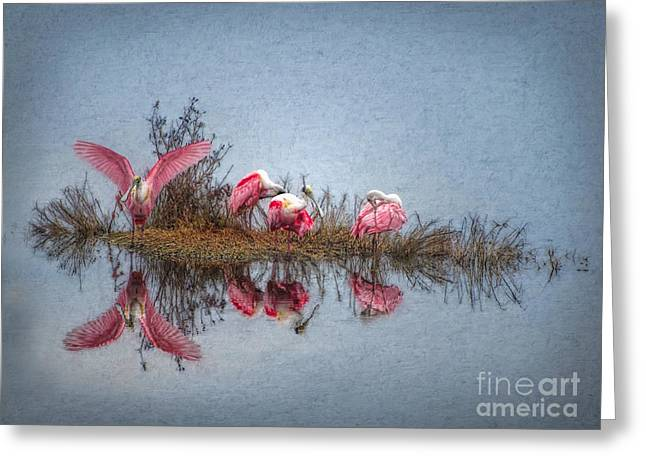 Greeting Card featuring the digital art Roseate Spoonbills At Rest by Lianne Schneider