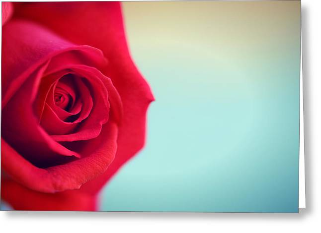 Roseblue Greeting Card by Lorella  Schoales