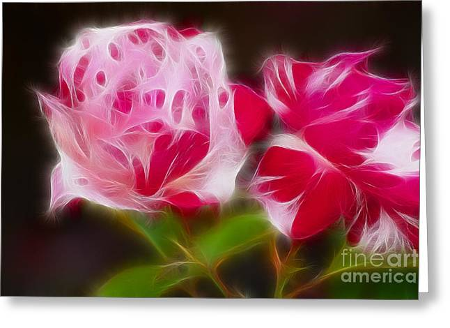 Roses 6221-fractal Greeting Card by Gary Gingrich Galleries