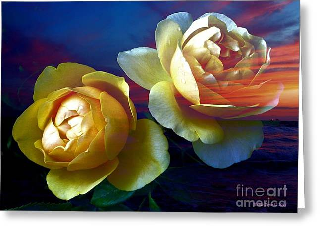Roses By The Sea Greeting Card