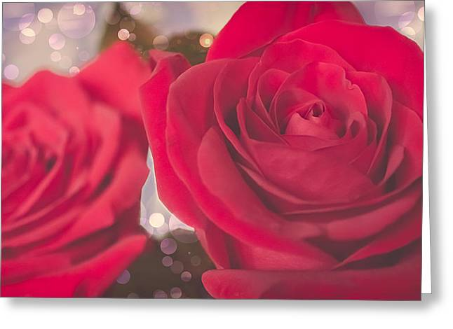 Roses For Me  Greeting Card by Maibel  Ziello