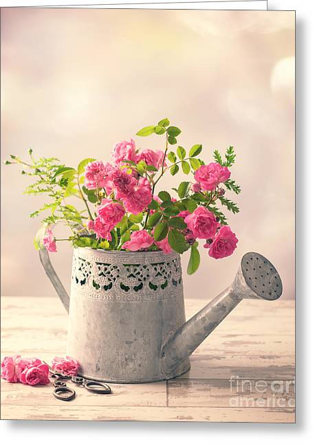 Roses In Watering Can Greeting Card by Amanda Elwell