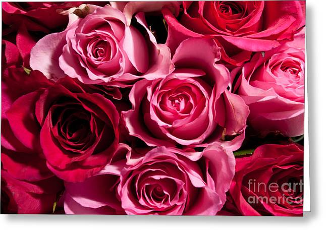 Greeting Card featuring the photograph Roses by Matt Malloy