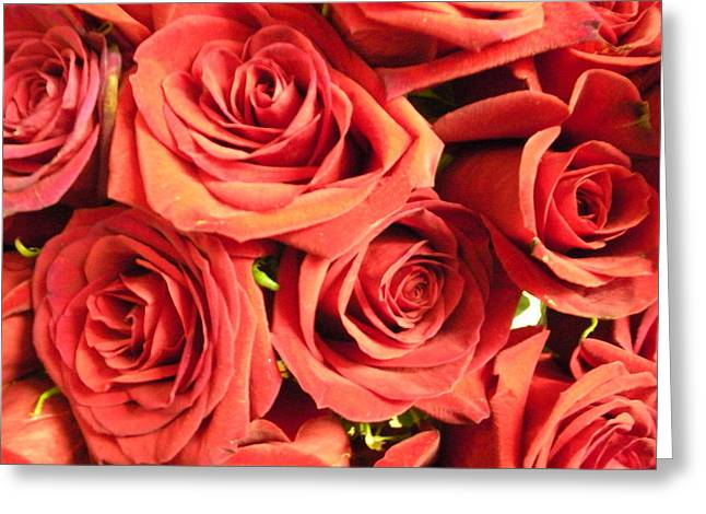 Roses On Your Wall Greeting Card by Joseph Baril