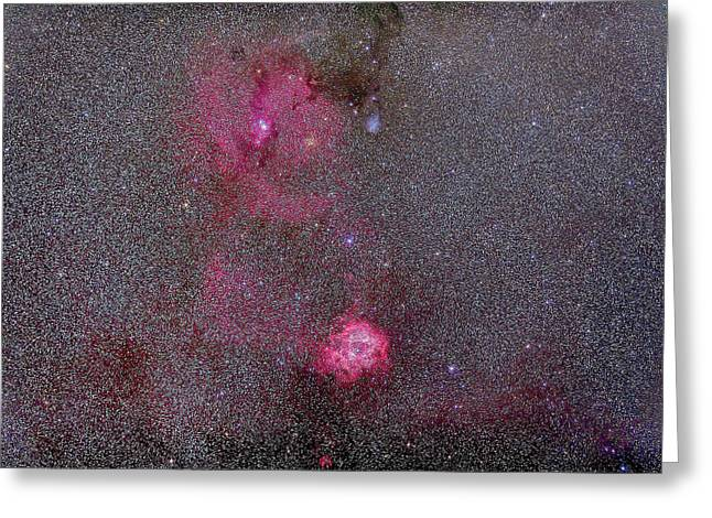 Rosette And Cone Nebula Area Greeting Card by Alan Dyer