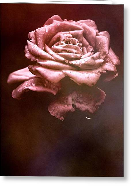 Rosy Fog Greeting Card