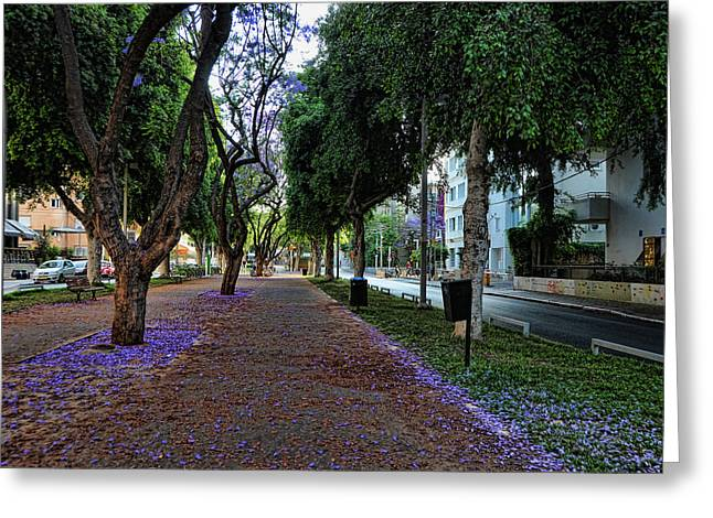 Rothschild Boulevard Greeting Card