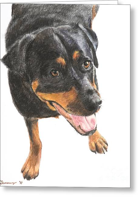 Rottweiler Looking Up Greeting Card