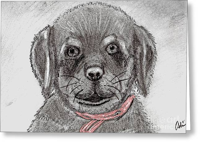 Rottweiler Pup Drawing With Color Splash Greeting Card by Minding My  Visions by Adri and Ray