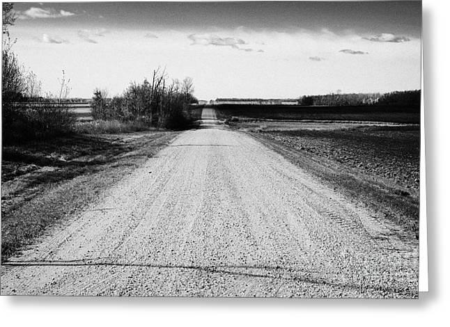 rough rural unpaved gravel road in remote Saskatchewan Canada Greeting Card by Joe Fox
