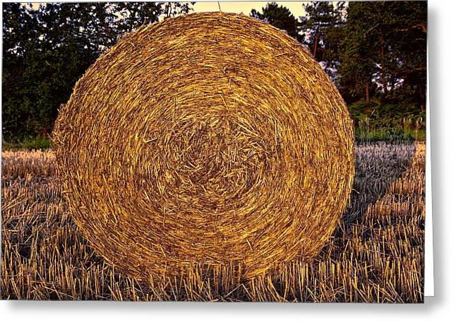 Round Hay Bale Greeting Card by Daniel Hagerman