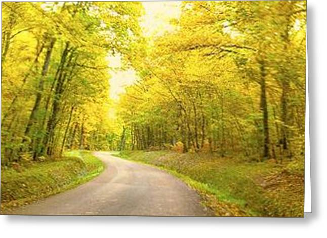 Route Dans La Foret Jaune Greeting Card