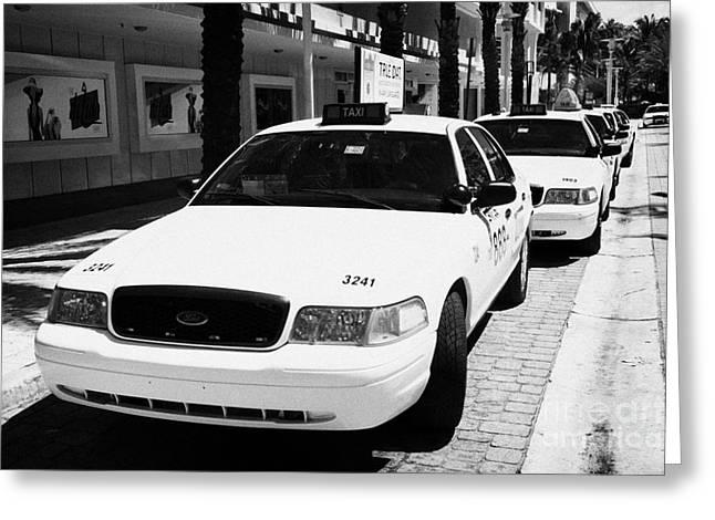 Row Of Yellow Cab Taxis In Miami South Beach Florida Usa Greeting Card by Joe Fox