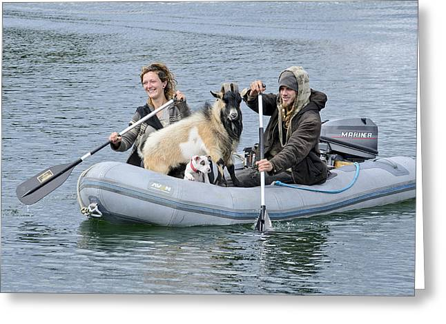 Row Your Goat Greeting Card