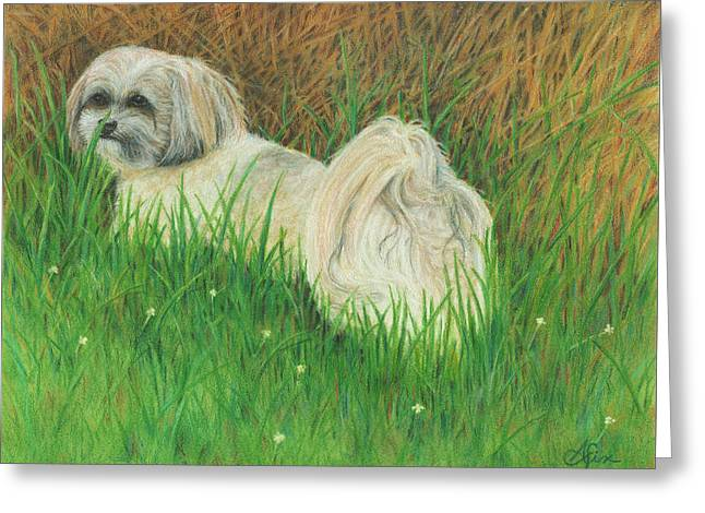 Roxey Greeting Card