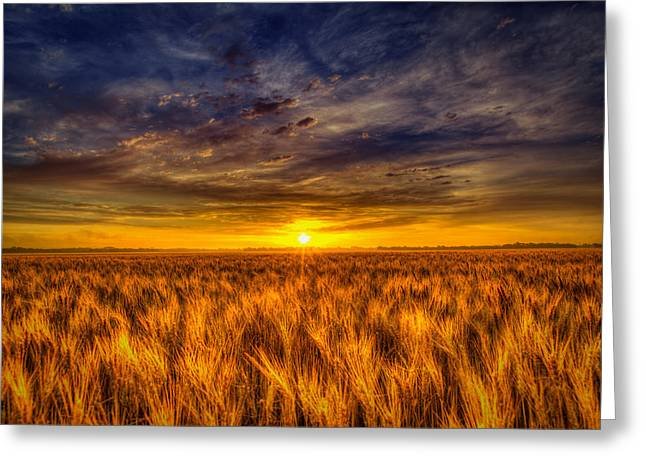 Royal Purple Sunrise Greeting Card by  Caleb McGinn