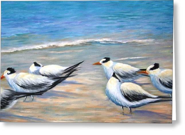 Royal Terns Greeting Card by Teresita Hightower