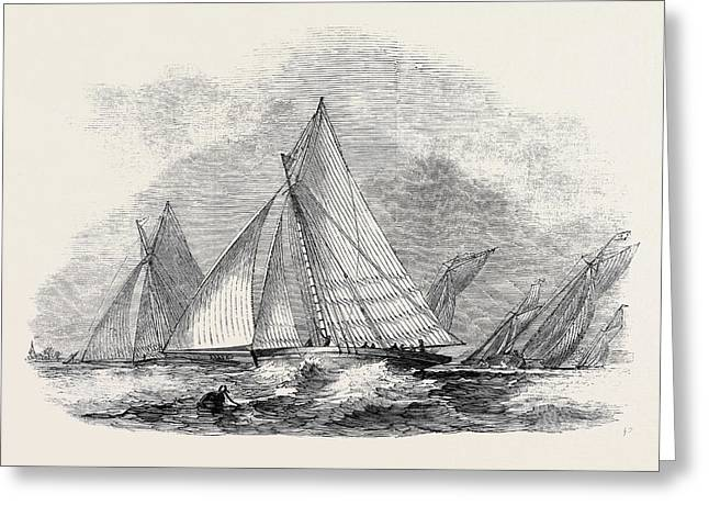 Royal Thames Yacht Club, Match For The Belvidere Cup Greeting Card