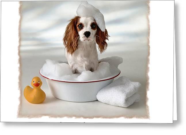 Rub A Dub Doggy Greeting Card by Diane Hagler