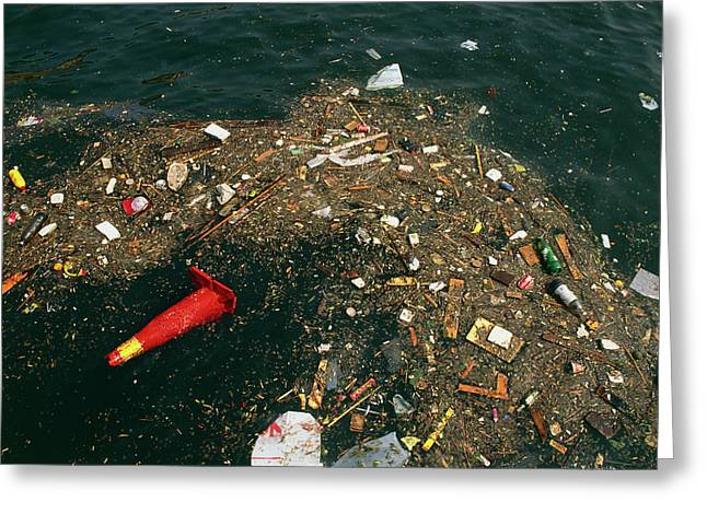 Rubbish Floating On A River Greeting Card by Tony Craddock/science Photo Library