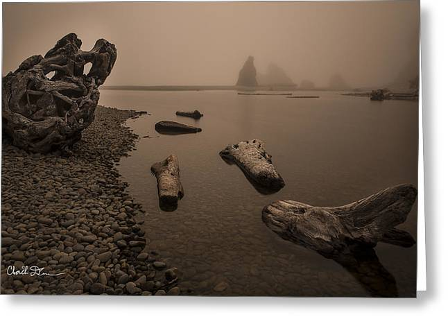 Ruby Beach Fog Greeting Card